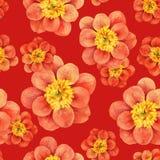 Modello senza cuciture dell'acquerello della peonia Carta da parati floreale estratta acquerello Fotografia Stock