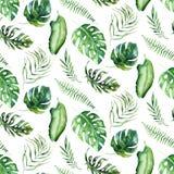 Modello senza cuciture dell'acquerello delle foglie tropicali, aloha decorazione della giungla Foglia di palma dipinta a mano Str illustrazione vettoriale