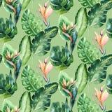 Modello senza cuciture dell'acquerello delle foglie tropicali, aloha decorazione della giungla Foglia di palma dipinta a mano Str illustrazione di stock