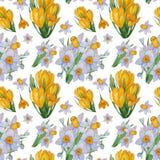 Modello senza cuciture dell'acquerello dipinto a mano dei fiori della molla royalty illustrazione gratis