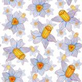 Modello senza cuciture dell'acquerello dipinto a mano dei fiori della molla illustrazione vettoriale