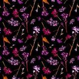 Modello senza cuciture dell'acquerello disegnato a mano con fiori ed erbe della viola del campo i piccoli su fondo nero immagini stock