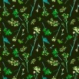 Modello senza cuciture dell'acquerello disegnato a mano con piccoli fiori e le erbe del campo verde e blu su fondo verde scuro fotografie stock