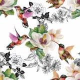 Modello senza cuciture dell'acquerello floreale tropicale con i colibris ed i fiori Pittura dell'acquerello Fotografie Stock Libere da Diritti