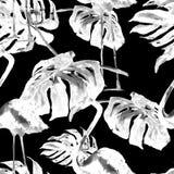 Modello senza cuciture dell'acquerello Illustrazione dipinta a mano delle foglie e dei fiori tropicali Motivo tropicale di estate Immagini Stock Libere da Diritti