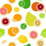 Modello senza cuciture dell'agrume fresco piano Bergamotto, limone, pompelmo, calce, mandarino, pomelo, arancia, arancia sanguine Immagine Stock Libera da Diritti
