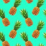 Modello senza cuciture dell'ananas Immagine Stock