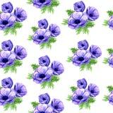 Modello senza cuciture dell'anemone dell'acquerello nel formato del quadro televisivo royalty illustrazione gratis