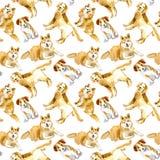 Modello senza cuciture dell'cani Labrador, Jack Russell Terrier e husky Fotografia Stock