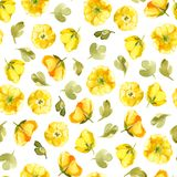 Modello senza cuciture dell'isolato del fiore di giallo dell'acquerello sulle sedere bianche Fotografie Stock