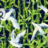 Modello senza cuciture dell'uccello asiatico della gru dell'acquerello illustrazione di stock