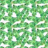 Modello senza cuciture della banana intrecciata dell'acquerello delle foglie di palma Immagini Stock