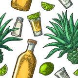 Modello senza cuciture della bottiglia, della tequila di vetro, del sale, del cactus e della calce Immagine Stock