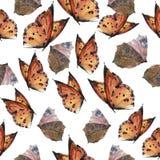 Modello senza cuciture della farfalla dell'acquerello Immagini Stock Libere da Diritti