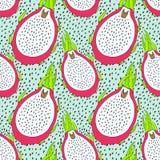 Modello senza cuciture della frutta di pitaya Vector l'illustrazione per il menu, le carte da parati e gli album per ritagli illustrazione vettoriale