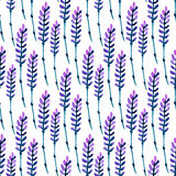 Modello senza cuciture della lavanda dell'acquerello Modello per tessuto, carta ed altri stampa e progetti Web Priorità bassa del royalty illustrazione gratis