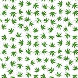 Modello senza cuciture della marijuana Fotografia Stock Libera da Diritti