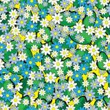 Modello senza cuciture della molla del fiore di bucaneve royalty illustrazione gratis