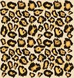 Modello senza cuciture della pelle del ghepardo del leopardo, Fondo macchiato stilizzato per modo, stampa, carta da parati, tessu illustrazione vettoriale