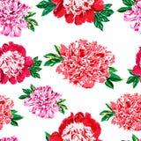 Modello senza cuciture della peonia delle rose dei fiori Fotografia Stock Libera da Diritti