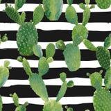Modello senza cuciture della pianta del cactus Fondo botanico di estate tropicale esotica Fotografie Stock Libere da Diritti