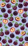 Modello senza cuciture della prugna porpora fresca, fette, pozzi, foglie, il centro Insieme della frutta Illustrazione di vettore royalty illustrazione gratis