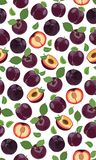 Modello senza cuciture della prugna porpora fresca, fette, pozzi, foglie, il centro Insieme della frutta Illustrazione di vettore illustrazione vettoriale