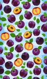 Modello senza cuciture della prugna porpora fresca, fette, pozzi, foglie, il centro Insieme della frutta Illustrazione di vettore illustrazione di stock