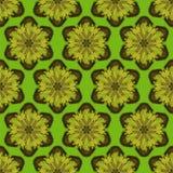 Modello senza cuciture della stampa Mandala Flowers con fondo verde Immagine Stock