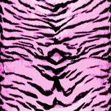 Modello senza cuciture della tigre rosa Progettazione animale Fondo di vettore Immagine Stock