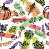 Modello senza cuciture della verdura Bella verdura disegnata a mano dell'illustrazione royalty illustrazione gratis