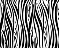 Modello senza cuciture della zebra Immagine Stock