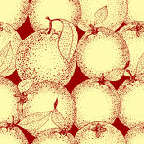 Modello senza cuciture delle arance e delle fette disegnate a mano nello stile di schizzo Illustrazione di vettore Immagini Stock