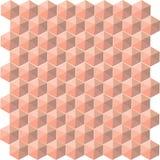 Modello senza cuciture delle cellule del hexahendron di vettore Fotografia Stock