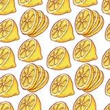 Modello senza cuciture delle fette di agrumi del limone Frutti del taglio del fondo di vettore con per il succo dell'etichetta di Fotografia Stock