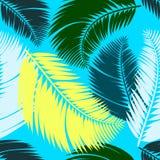 Modello senza cuciture delle foglie di palma multicolori Immagine Stock