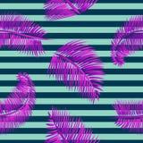 Modello senza cuciture delle foglie di palma porpora, su fondo a strisce blu Fotografia Stock