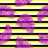 Modello senza cuciture delle foglie di palma porpora, su giallo, fondo a strisce in bianco e nero Fotografie Stock Libere da Diritti