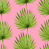 Modello senza cuciture delle foglie di palma tropicali dell'acquerello Immagini Stock Libere da Diritti