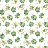 Modello senza cuciture delle foglie di palma tropicali disegnate a mano Fotografia Stock Libera da Diritti