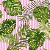 Modello senza cuciture delle foglie di palma tropicali Fondo floreale dell'acquerello Progettazione botanica esotica per tessuto, illustrazione vettoriale