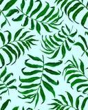 Modello senza cuciture delle foglie di palma tropicali royalty illustrazione gratis