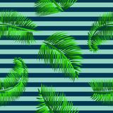 Modello senza cuciture delle foglie di palma verdi, su fondo a strisce blu Immagini Stock