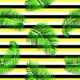 Modello senza cuciture delle foglie di palma verdi, su giallo, fondo a strisce in bianco e nero Immagini Stock