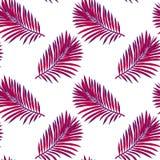 Modello senza cuciture delle foglie tropicali Vector il reticolo senza giunte Illustrazione tropicale Fogliame della giungla royalty illustrazione gratis
