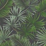 modello senza cuciture delle foglie tropicali verde intenso sul backgro grigio illustrazione di stock
