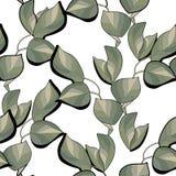 Modello senza cuciture delle foglie verdi Fotografie Stock Libere da Diritti