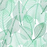 Modello senza cuciture delle foglie verdi del fogliame Immagine Stock