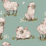 Modello senza cuciture delle pecore sveglie illustrazione vettoriale