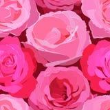 Modello senza cuciture delle rose rosa luminose dei grandi fiori illustrazione di stock